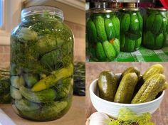 Cum sa murezi castravetii in DOAR 24 de ore! Ingredientul care ti-i face… Romania Food, Canning Pickles, Diy Cans, I Want To Eat, Preserving Food, Canning Recipes, Fruits And Vegetables, Celery, Preserves