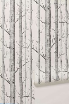 birch tree wallpaper -- I think this might be neat in a small half guest bath... Maybe....