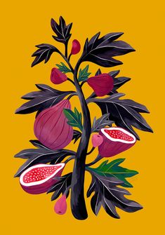 Fig Painting on Yellow Background , Fig Illustration, Fruit Illustration, Gouache Painting , Illustration Botanique, Botanical Illustration, Illustration Art, Gouache Illustrations, Illustrations Posters, Impressions Botaniques, Orange Painting, Kitchen Posters, Affinity Designer