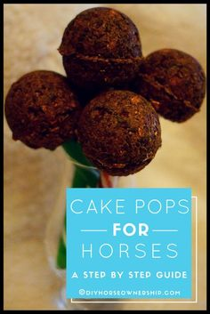 Do It Yourself (DIY) How to Make Cake Pops for Horses: a Horse Treats Recipe