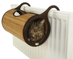 good idea, My cat used to sleep on the top of ours, we used to say she was having Radiator treatment.