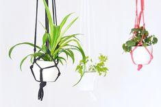 Blumenampel aus Jersey-Garn selber machen: Das DIY ist dabei ganz einfach und schnell gemacht.: Zur Schritt für Schritt Anleitung: Blumenampel aus Jersey-Garn selber machen: Das DIY ist dabei ganz einfach und schnell gemacht. ///interior ///einrichtung ///blumenampeln ///urbanjungle ///gardening ///urbangardening ///pflanzen ///pflanzendeko ///pflanzenliebe ///interior ///einrichtung ///blumenampeln ///urbanjungle ///gardening ///urbangardening ///pflanzen ///pflanzendeko ///pflanzenliebe