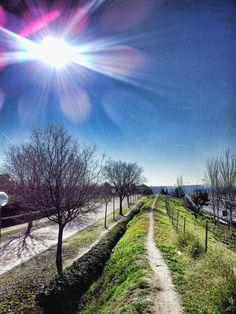 A walk on 28 December in Valdebernardo,  in Madrid, Spain.
