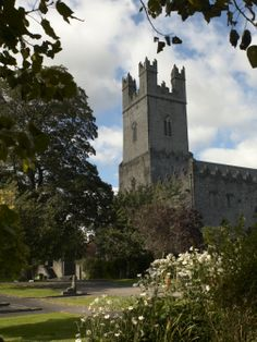 Limerick City's Cathedral of St Mary Blessed Virgin was founded in 1168 on the site of a palace donated by Donal Mor O'Brien, King of Munster!