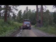 Лешего запечатлели на видео в России - X-Digest
