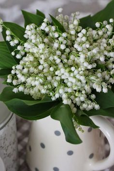 May Flowers, Fresh Flowers, Beautiful Flowers, Flower Centerpieces, Flower Arrangements, Montreal Botanical Garden, Lily Of The Valley, Welcome Spring, Flower Power