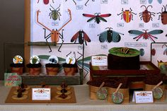 Bug and insect dessert table