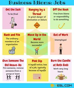 Idioms Relating to Jobs
