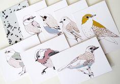 'k ben reuze blij met maartjes mooie vogeltjes