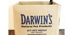 Darwin's Raw Cat Food Review – Yeezy + Penny