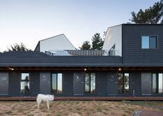 Bow-wow House is a guesthouse for dog lovers