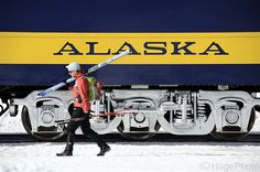 Why take the train when you can ski just as fast? #Alaska (via Hage Photo)