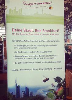 """""""Frankfurt summt"""": die Initiative setzt sich mit viel Einsatz für die Förderung von Stadthonig und damit für die biologische Vielfalt in der Großstadt ein."""