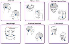 Pares regularesparásitos - Par Biomagnético - centrobioenergetica