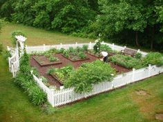 pretty vegetable garden ~