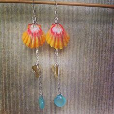 Pretty Hawaiian sunrise shell earrings