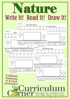 Nature themed Write It, Read it, Draw it Sentence Activity FREE from The Curriculum Corner