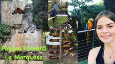 Cosas para hacer en Puerto Rico || 8 de enero 2017 Parte I || Parque Forestal La Marquesa - YouTube