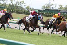 ウインアルザス(中京) 2012-07-15