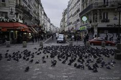 "Paris - Meeting chez les ""Pigeons"" by Fabrice Denis on 500px Porte Saint-Denis"