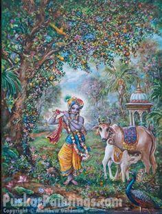 Krsna w/ cows. Painting by Pushkar das.