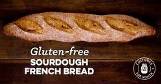 Gluten-Free Sourdough French Bread