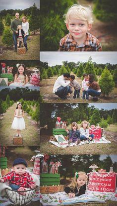 Tree Farm Christmas Holiday Mini Sessions by Tara Merkler Photography in Central Florida