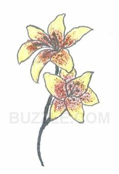 """The spectacular blooms with a color range from pure white to various shades of pink and yellow has made stargazer lily a """"star"""" flower of the lily family in the true sense. The deep spiritual and philosophical meanings associated with this floral celebrity has inspired tattoo aficionados to get this exotic flower design carved on their bodies and make a unique style statement."""