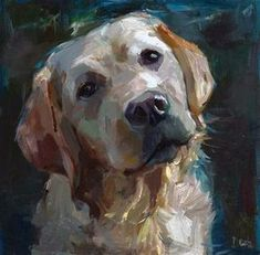 "Daily Paintworks - ""Amigo - a white labrador, a dog"" - Original Fine Art for Sale - © adam deda #OilPaintingDog"