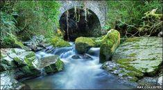 Ballaglass Glen by Ray Collister - Isle of Mann