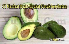 manfaat alpukat untuk kesehatan dan juga baik untuk kecantikan kulit karena kandungan vitamin E dan Vitamin C