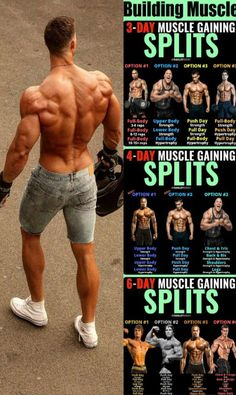 While there are several ways of organising your week in the gym, here are the most common approaches:The Bro Split. Here, you devote separate days to obliterate specific muscle groups or body-regions. Gym Workout Chart, Full Body Workout Routine, Gym Workout Tips, Workout Schedule, Push Pull Legs Workout, Push Workout, Workout Plan For Men, Workout Fitness, Body Fitness