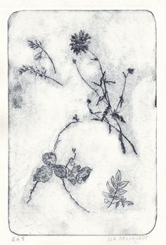 isabelle Sauvageot - Etching, dry point  10X15 cm