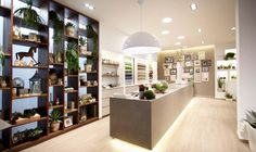 Zubini floralist store by Flussocreativo, Gussago - Italy