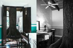 Hacienda San Jose, chambre avec un arbre dans la salle de bains !! <3 - Mexique, Yucatan