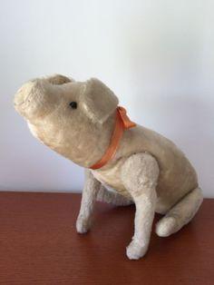 Steiff-Schwein-Pig-aus-1913-18-45cm-mit-Knopf