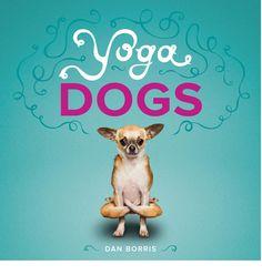 pipidollysblog: Lindas fotos de cães de várias raças fazendo yoga