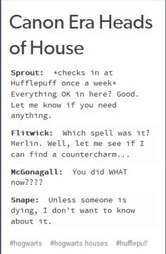 I want to know how he treated the Slytherins when no one is watching is he actually kind or is he sarcastic Headcanon Harry Potter, Harry Potter Puns, Harry Potter Artwork, Harry Potter Universal, Harry Potter World, Hogwarts Mystery, Hogwarts Houses, Harry Potter Funny Pictures, Hogwarts Professors