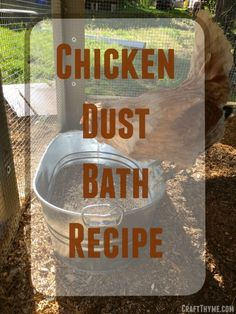 How to make a chicken dust bath for your flock