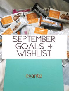 "Last month I saw a bunch of bloggers post an ""August Goals"" and some even added a wishlist so I thought that would be such a perfect post for my blog to start off every month, so I jump…"