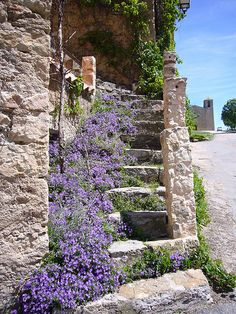 Staircase, Tourtour, France