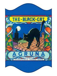 Buy Black Cat Oranges Giclee Print