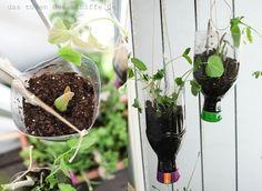 UPCYCLING// Diy Blumenampeln Oder Die Hängenden Gärten Von Ottensen