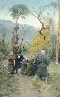 Snapshots of village life in Japan during the 1880's.  Hand-colored photos, photographer unknown.  Images via National Museum of Denmark on Flickr.