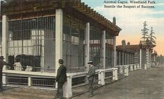 Animal cages at Woodland Park Zoo, 1916 Seattle Washington, Washington State, Woodland Park Zoo, Reptile House, Moving To Seattle, Pony Rides, Seattle Area, Pet Cage, Black And White Pictures