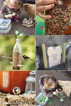 ideeën om zelf vogelvoer te maken samen met kinderen. Leuk om te knutselen in de herfst en de vogels zijn er blij mee #herfst #knutselen #vogelvoer Diy Crafts For Gifts, Fall Crafts For Kids, Toddler Crafts, Crafts To Do, Diy For Kids, Acorn Crafts, Pumpkin Crafts, Winter Diy, Fun Activities For Kids