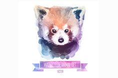 Watercolor animals | Red panda by Krol on Creative Market