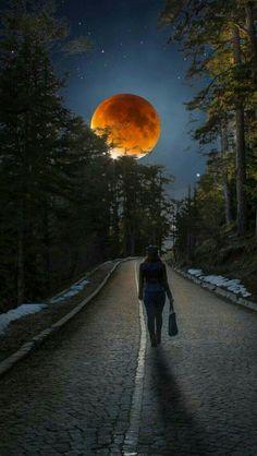 Photograph Super Blood Moon by Cuma Çevik on Stars Night, Night Light, Stars And Moon, Shoot The Moon, Moon Pictures, Beautiful Moon, Blood Moon, Moon Art, Belle Photo