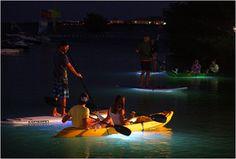 LED kayak- illuminated night tours in Siesta Key!