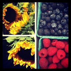Santa Monica Farmers Market #SMpinspiration